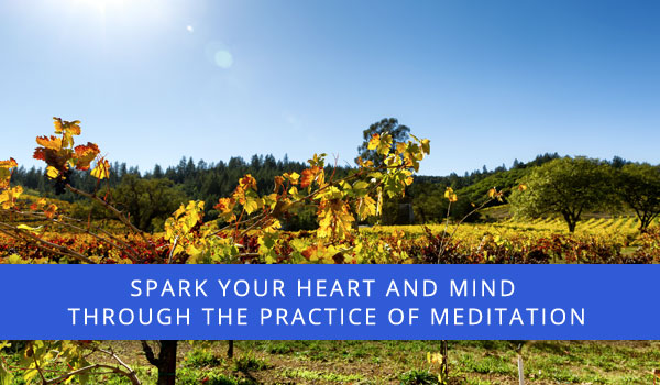 Beautiful seasonal photo with message: Spark your heart and mind through the practice of meditation.