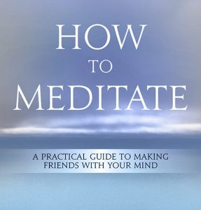 Pema Chodron: How to Meditate image